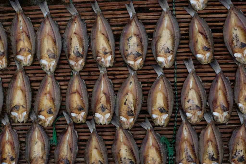 Philippines' National Fish Archives - Eats More Fun with